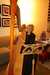 string instrument, harp, string instrument,
