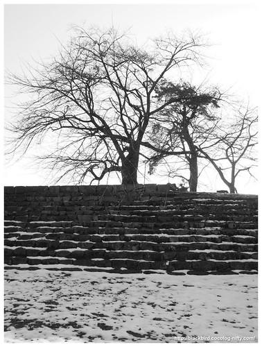 Snow melts #02