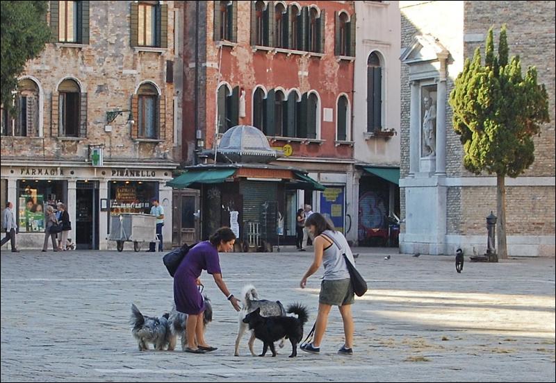 Venezia_0307