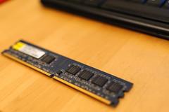 RAM 60/365
