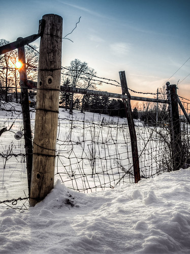 trees winter sunset sky sun snow wisconsin fence wire post olympus friday hdr hff photomatix tonemapped epl2