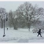 Snowy Morning In Wellesley Samusung Galaxy Note II