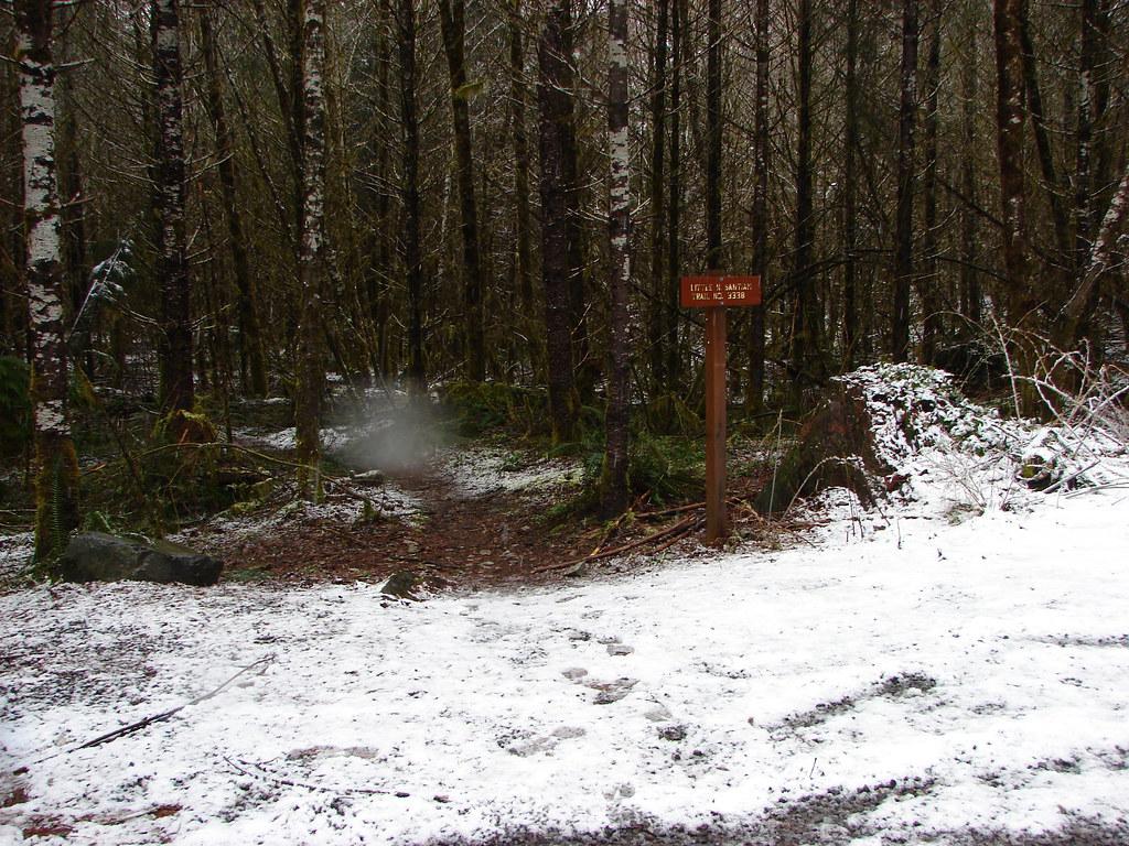 Fresh snow at the Little North Santiam Trailhead