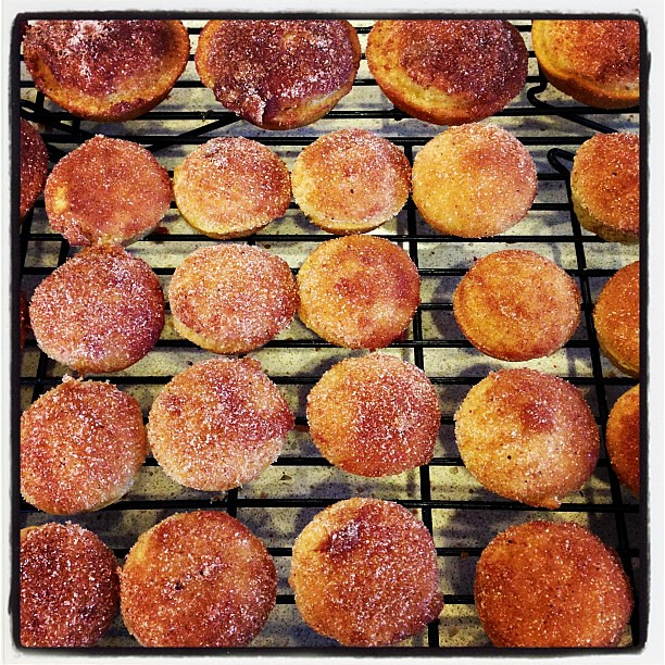 Mini pumpkin muffin donut holes! Thanks for the recipe @lebraaten