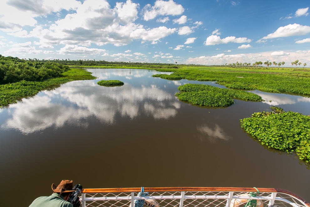 Thomas Vinke, creador del Programa Paraguay Salvaje, realiza una toma del Río Negro lleno de camalotes, a pocos metros de llegar a la Reserva 3 Gigantes. (Tetsu Espósito).