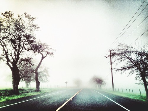 california road travel tree rural landscape pretty alone empty perspective foggy commute livermore hollingsworth iphone5 iphoneography uploaded:by=flickrmobile flickriosapp:filter=nofilter