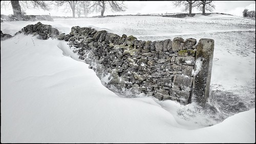 Moss and Wall and Snowdrift by geospace