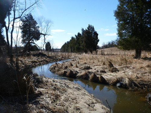 Photo set of Batchellors Run East Stream Restoration