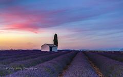 nightfall Provence