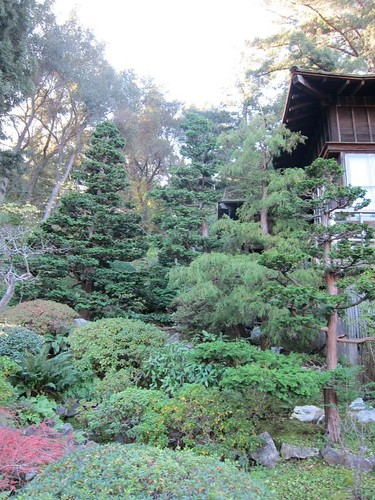 Hakone Japanese Gardens, Saratoga, CA IMG_2424