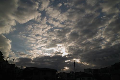 SDIM0533 by kizukuY