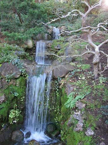 Hakone Japanese Gardens, Saratoga, CA, waterfall IMG_2433