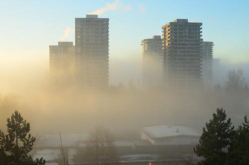 <p>Cameron, Burnaby, British Columbia, Canada<br /> Nikon D5100, 35 mm f/1.8<br /> December 30, 2012</p>