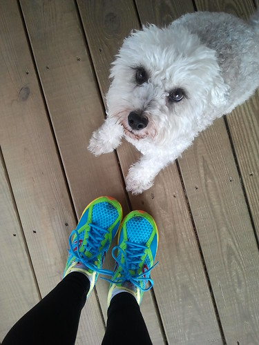 Back from a long run, my greeter