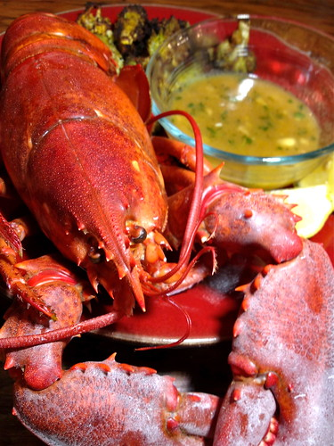 New Year's Lobster w White Wine Butter Sauce
