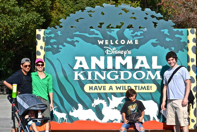 animal kingdom - florida