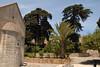 Kreta 2011-1 185