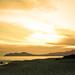 Small photo of Melia Beach