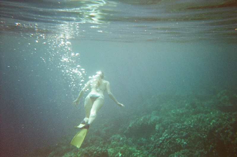 Snorkelling at Captain Cook Monument - Kealakekua Bay