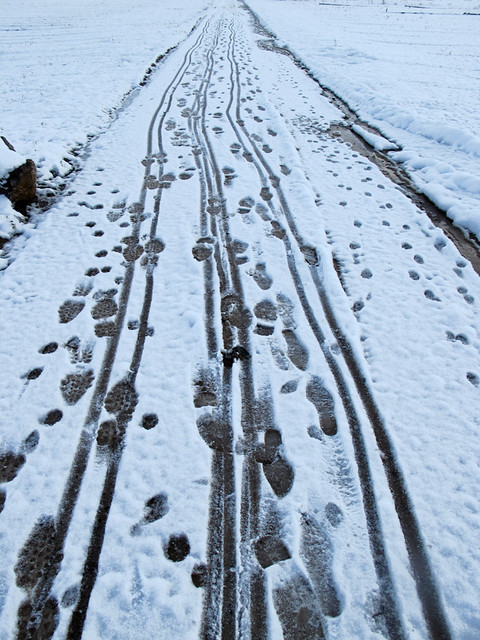 Recent  Traces in the Snow