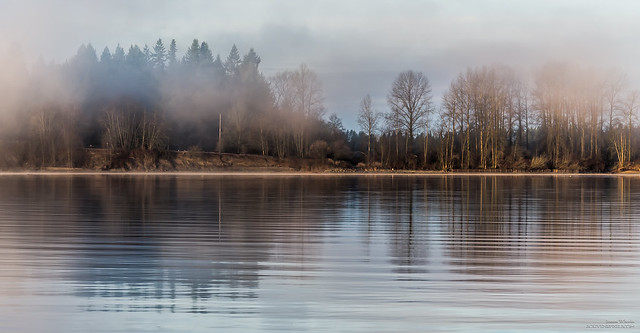 Fraser River Misty Morning