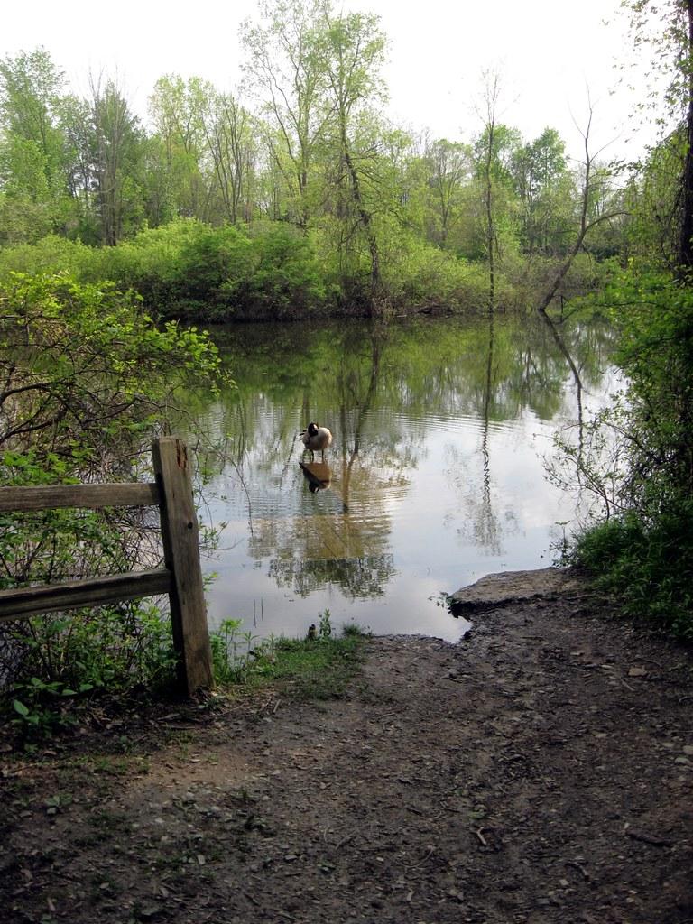 Kearsley Lake Terrace Mobile Home Park