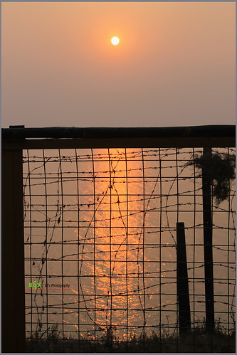 trip travel light sunset sky sun india lake black color reflection water grass silhouette 1025fav digital canon fence dark geotagged photography eos flora focus asia moments glow natural photos outdoor dusk growth simplicity ripples rays 1855mm t3 cs3 stillphotography 1100d