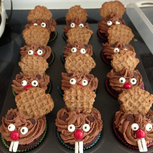 Beaver cupcakes for Will's Barking Beavers ski team.