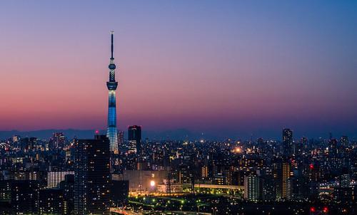 地方から東京オリンピックを見に行くときに一緒に行きたい観光スポット