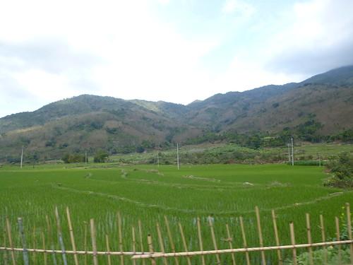 Hainan13-Wuzhishan-Montagne (20)