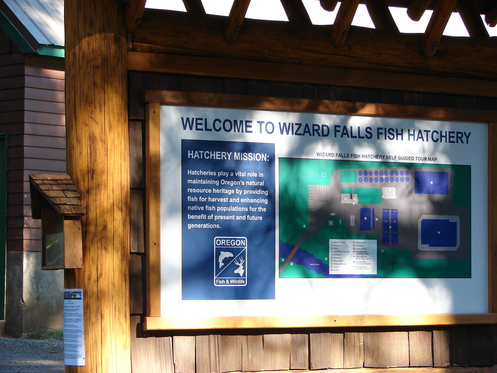 Wizard Falls Fish Hatchery