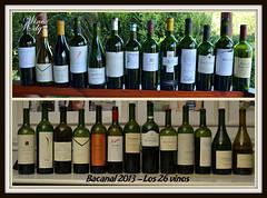 Bacanal 2013 – Vinos de Alta Gama – los 26 vinos