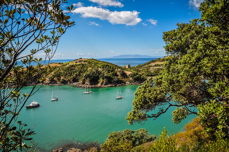 waiheke island activities