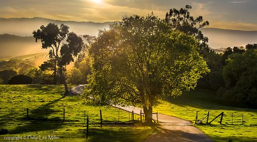 sunset landscape trails d600 rockpaper stanforddishtrail californiaoaktrees