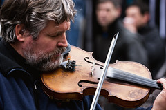 bowed string instrument, violinist, classical music, bassist, string instrument, musician, violin, viola, music, fiddle, violist, string instrument,