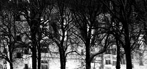 """Nevers - Nièvre - Palais Ducal sous la Neige dérrière """"la forêt"""" by serguei_30"""