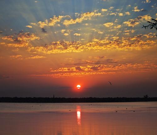 light sun colors birds sunrise niagara explore rays lakeontario jordanstation vertorama jordanharbor zurimiabrod