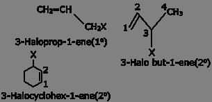 CBSE Class 12 Chemistry Notes: Haloalkanes and Haloarenes - Classification of Halogen