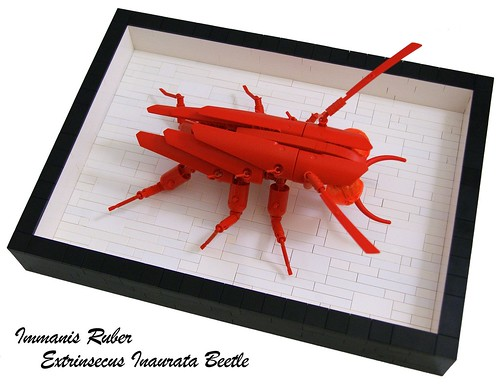 Monstrous Red Plated Beetle