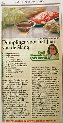 Telegraaf Wilbrink februari 2013