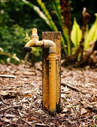 It's a tap!
