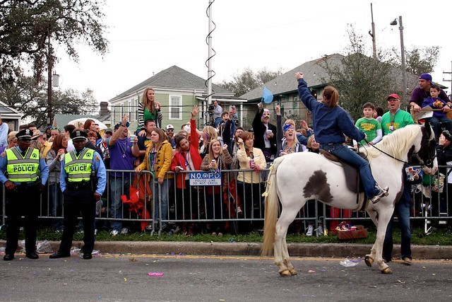 horse party, new orleans