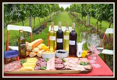 Los vinos de Mar del Plata, volvieron al lugar que los vió nacer…