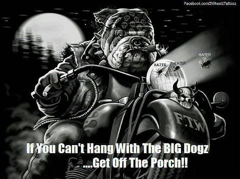PorchBigDogs