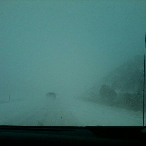 Didn't expect white-out conditions on our way to CA.