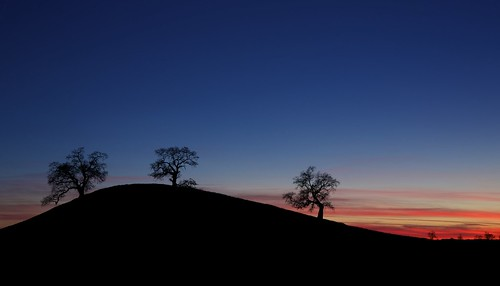 california ca blue trees sunset shadow red sky cloud silhouette landscape hill layers bluehour oaks knoll oaktree ernogy