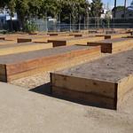 LANLT Fremont garden beds