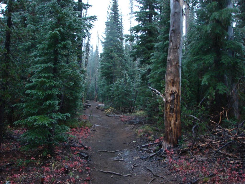 Obsidian Trail