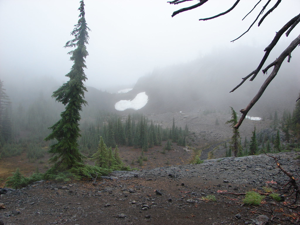 Snow from the Pacific Crest Trail