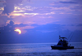 Charter boat Wild Bill tarpon fishing in Key West harbor
